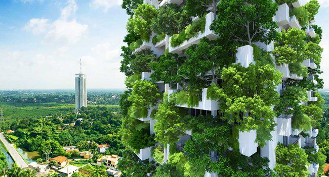 Quais são as principais certificações ambientais que as construtoras precisam conhecer