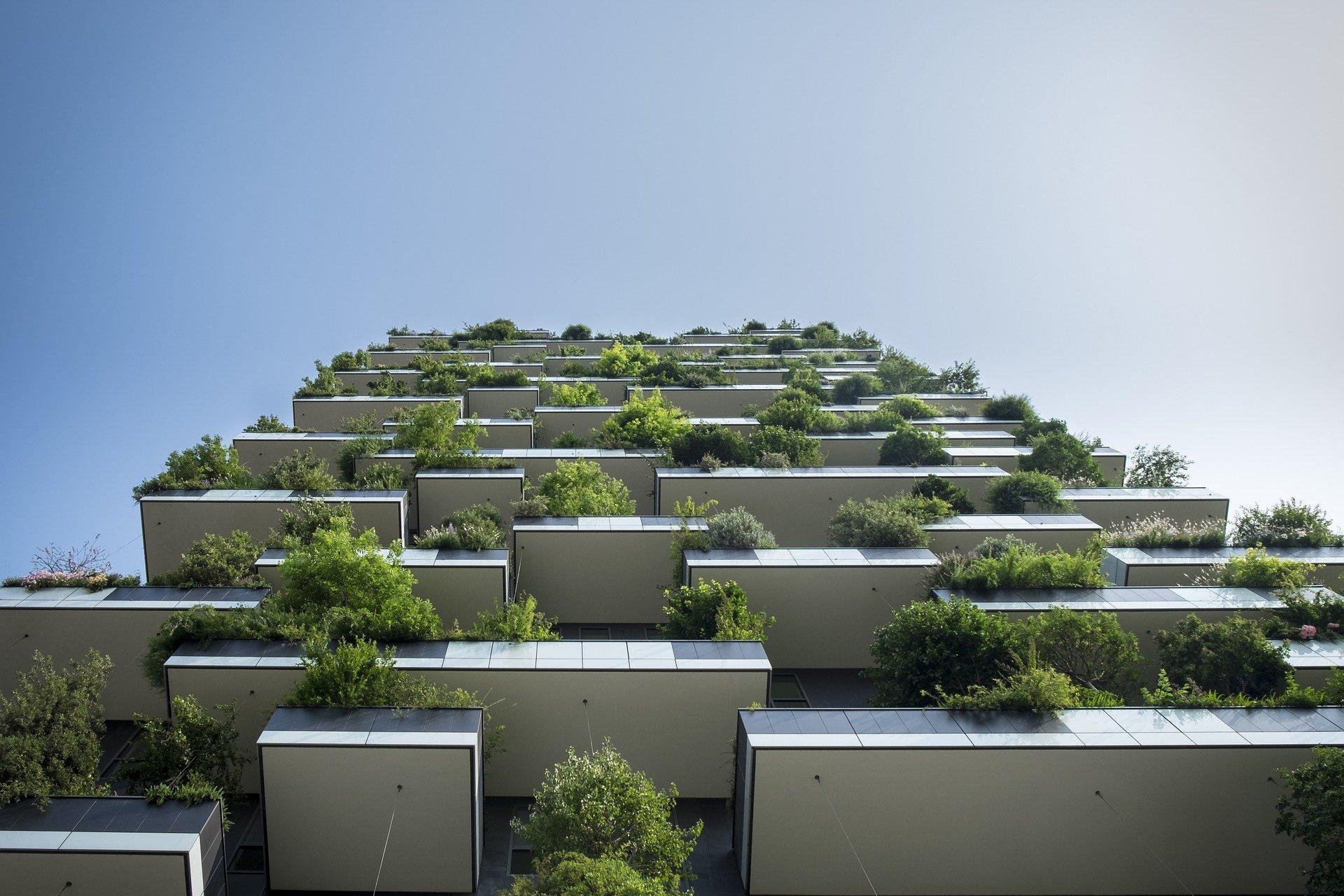Você já ouviu falar da Bioarquitetura?
